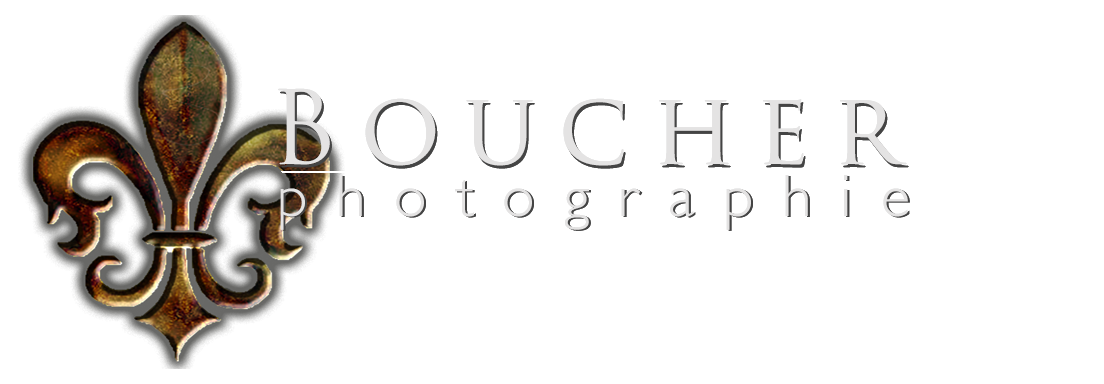 Boucher Photographie